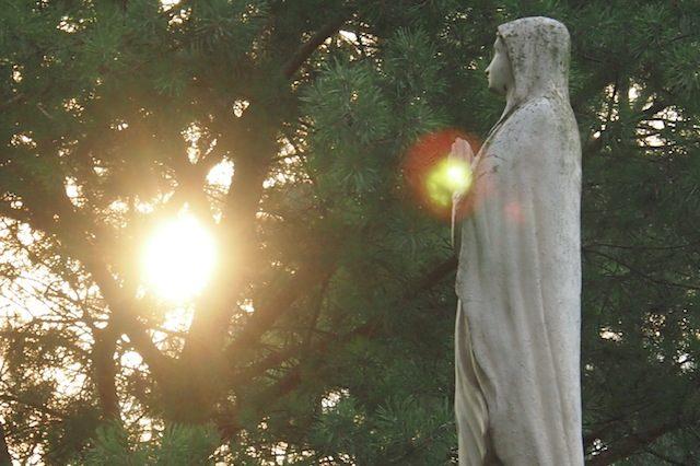 Rajmund: Cześć Maryi, cześć i chwała