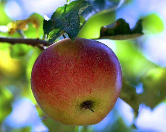 Monika: Na sto procent zawierzyłam i dostałam piękny owoc