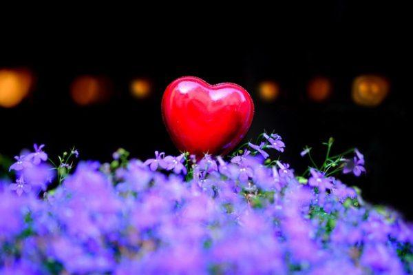 Beata: To cudowne! Czuć w sercu miłość i dobro