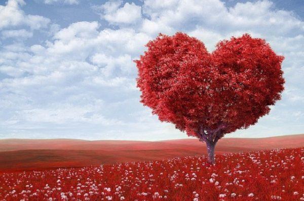 Kobieta na początku drogi: Odnalazłam prawdziwą miłość życia
