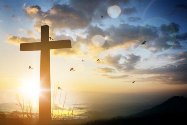 Karolina: Niech się dzieje wola Nieba
